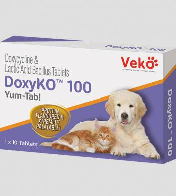 قرص داکسیکو| Doxyko Tablets