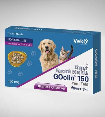قرص نتی بیوتیک گسلین|GOclin Tablets